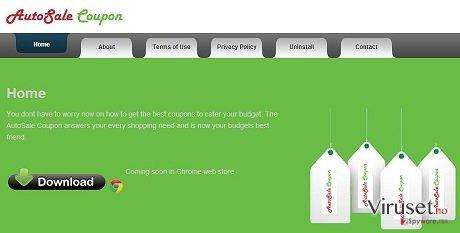 AutoSale Coupon adware skjermbilde