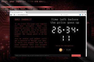 Skjermbilde av betalingssiden til BadRabbit