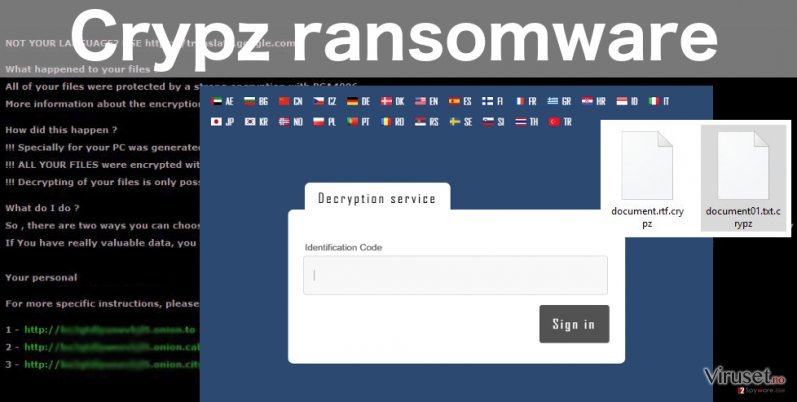 An illustration of the Crypz ransomware virus