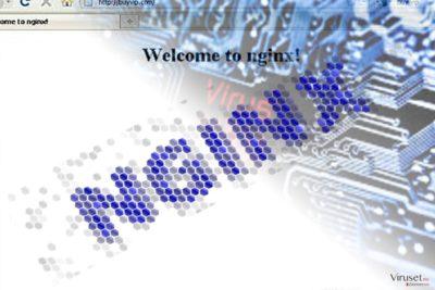 Bilde viser Nginx malwarfe