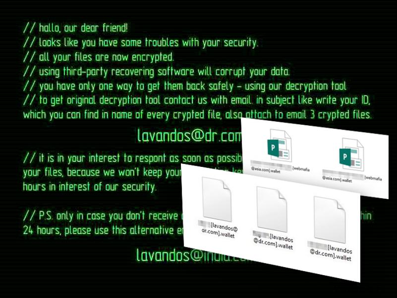 Wallet ransomware virus skjermbilde