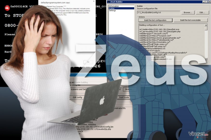 Bilde av Zeus viruset